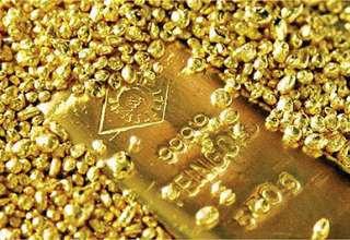 قیمت جهانی و تولید داخلی طلا افزایش یافت