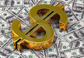 دولت عزمی برای کاهش نرخ دلار ندارد