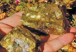کشف معدن طلا با ظرفیت ذخیره 4000 تن طلا در نهبندان
