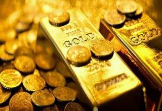 ماه طلایی برای سکه تمام