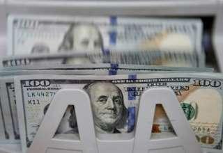 یک بام و دو هوای دولت در نرخ ارز/ بانک مرکزی از خودش شروع کند