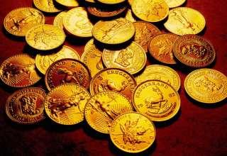 مرزداران هنگ پاوه ۱۳ کیلوگرم طلا به ارزش ۲۵میلیارد ریال کشف کردند