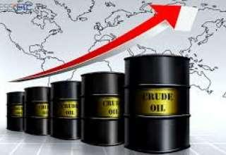 تازه ترین آمارها از کاهش تولید نفت آمریکا