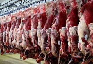 ۲.۵ میلیون کیلوگرم گوشت از گمرکات کشور در حال ترخیص است