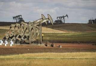 افزایش قیمت نفت به دلیل استمرار کاهش تولید