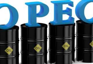 اوپک خواسته ترامپ را رد کرد/کاهش تولید اوپکیها برای افزایش قیمت نفت